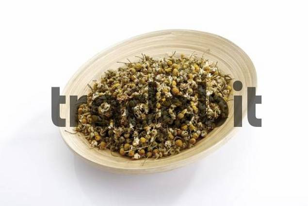 Dried Camomile or Chamomile blossoms Matricaria recutita in a wooden bowl