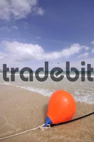 Red buoy, Playa de Sotavento beach, Jandia, Fuerteventura, Canary Islands, Spain, Europe
