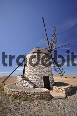 Old windmill near Tefia, Fuerteventura, Canary Islands, Spain, Europe