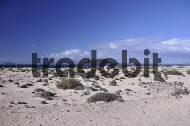 Playa de Corralejo beach, Lanzarote Island at back, Fuerteventura, Canary Islands, Spain, Europe