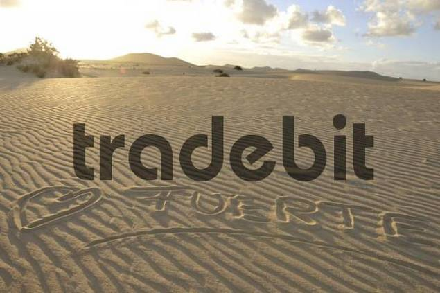 Fuerte written in the sand, dune, backlit, evening, Corralejo National Park, Fuerteventura, Canary Islands, Spain, Europe