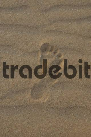 Footprint, sand dune, evening, Corralejo National Park, Fuerteventura, Canary Islands, Spain, Europe