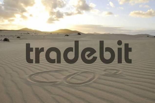 CO2 written in the sand, dune, backlit, evening, Corralejo National Park, Fuerteventura, Canary Islands, Spain, Europe