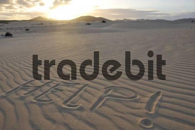 Help written in the sand, dune, backlit, evening, Corralejo National Park, Fuerteventura, Canary Islands, Spain, Europe