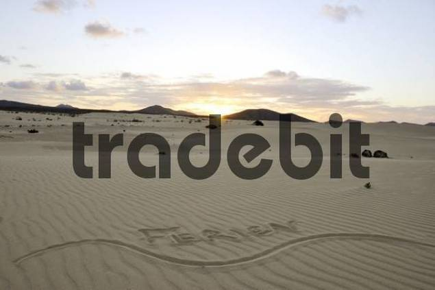Ferien, holidays, written in the sand, dune, backlight, evening, Corralejo National Park, Fuerteventura, Canary Islands, Spain, Europe