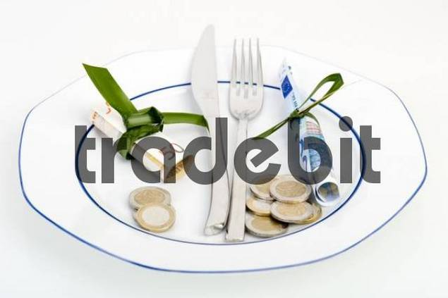Symbolic picture for expensive food, dining