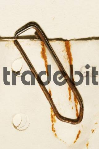 paper clip trade I am selling one paper clip for trade only will review all offers | ebay.