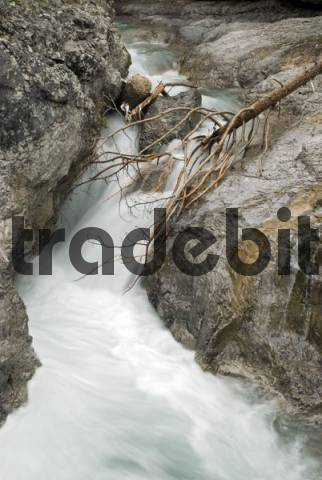 Schwarzwassertal Gorge, near confluence with the Lech River, Lechtal, Tyrol, Austria, Europe