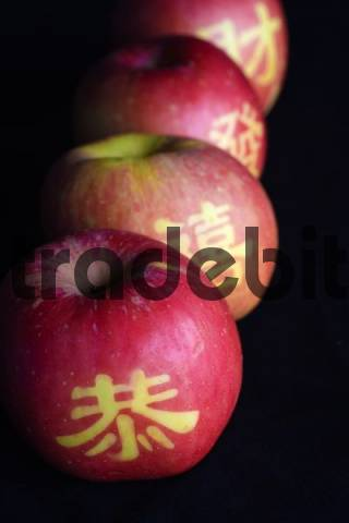 Apples ripened with templates of Chinese characters