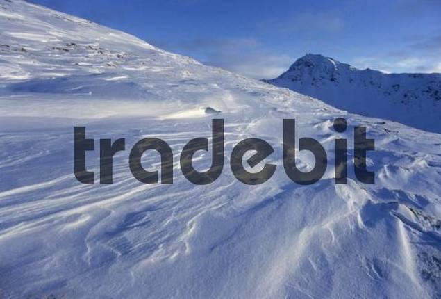 Snow field, snow drifts, sastrugi, zastrugi, Tux Alps, Tyrol, Austria, Europe
