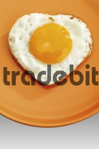 Sunny side up options trade