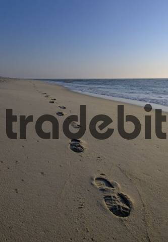 Trails in the sand, western beach of Sylt, Schleswig-Holstein, Germany, Europe