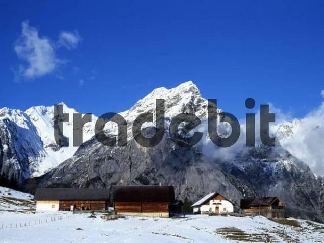 Walder-Alm alpine pasture, Karwendel Range, Tyrol, Austria, Europe