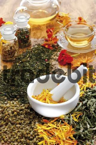Mortar and pestle, tea, glass teacup and saucer, apothecary bottles, healing herbs and spices, medicinal plants