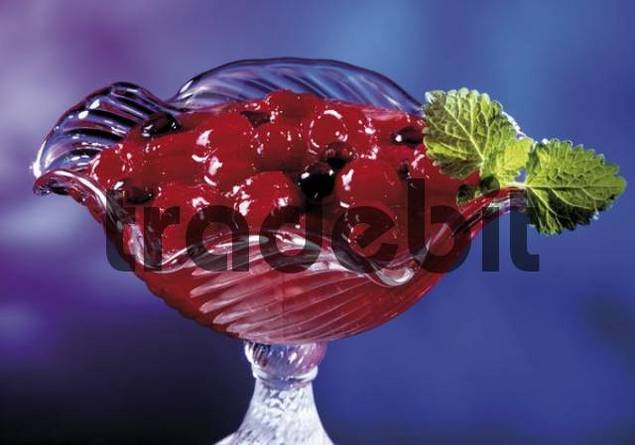 Glass goblet with Rote Gruetze, red fruit pudding