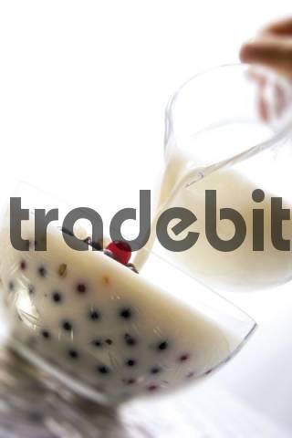 Milk with blueberries