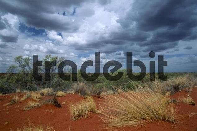 Stormy clouds over the outback, Western Australia, Australia