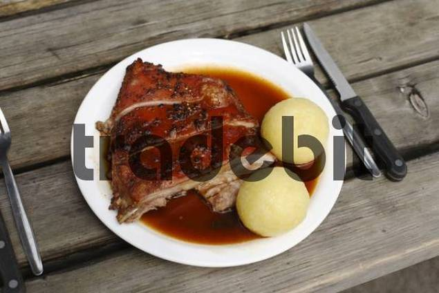 Suckling Pig with Dumplings served in a beer garden in Taxisgarten, Munich, Bavaria, Germany, Europe