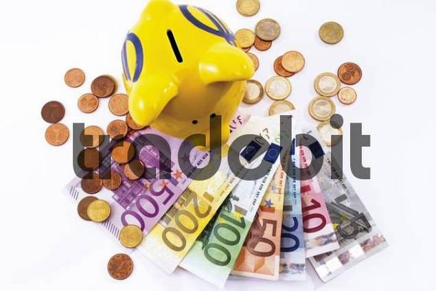 Piggy Bank with euro banknotes and coins