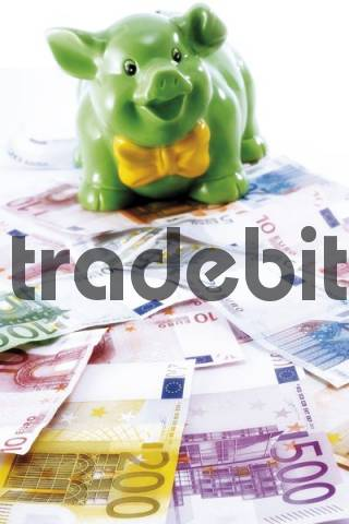 Piggy Bank standing on Euro banknotes