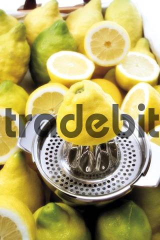 Organic lemons on a lemon squeezer