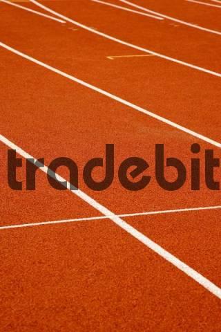 Lines on the floor, between running tracks