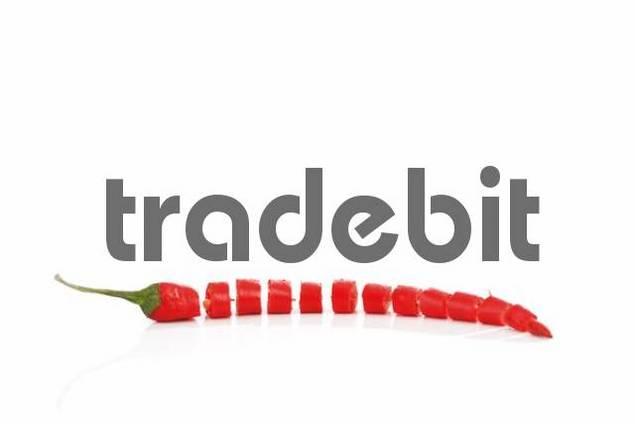 Chilli Pepper Capsicum