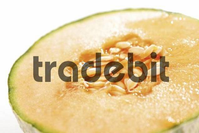 European Cantaloupe Melon Cucumis melo cantalupensis