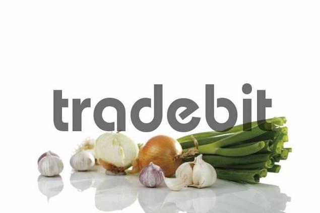 Scallion Allium fistulosum, Onions Allium cepa and Garlic Allium Sativum