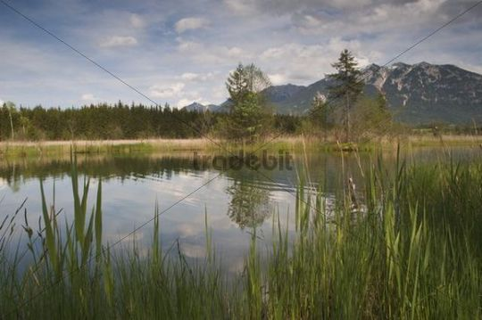 Barmsee Lake, Upper Bavaria, Bavaria, Germany, Europe