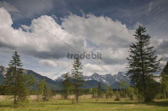 Countryside near Barmsee Lake, Upper Bavaria, Bavaria, Germany, Europe
