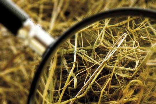 Needle in a stack of hay, loupe