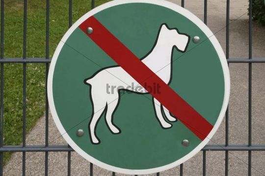 Sign, dogs not allowed