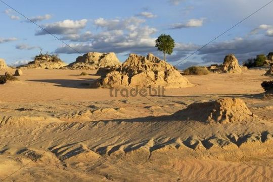 Evening mood at the petrified sand dunes in Mungo National Park, New South Wales, Australia