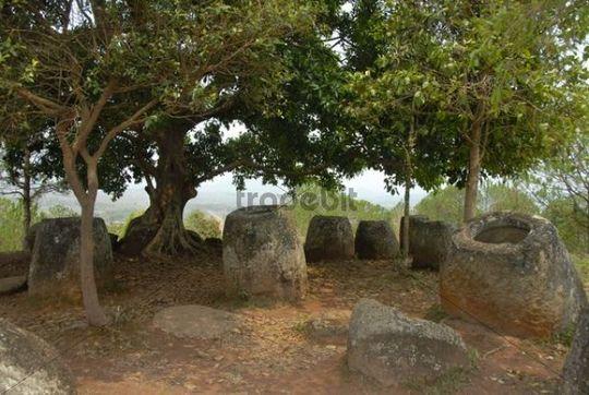 Stone jugs under a tree, Plain of Jars site No. 2, Hai Hin Phu Salato, Xieng Khuang Province, Laos, Southeast Asia