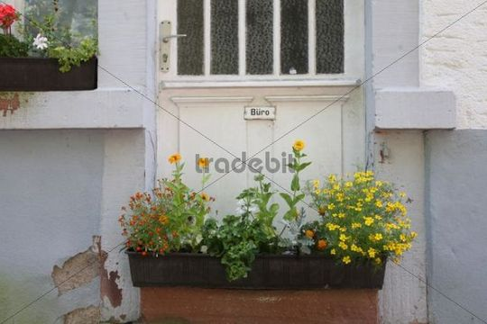 Entrance of an old office building with a flower box, former candle factory near Heidelberg, Baden-Wuerttemberg, Germany, Europe