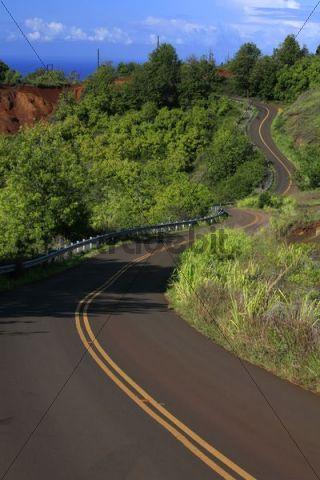 Scenic route in Waimea Canyon, Kauai Island, Hawaii, USA