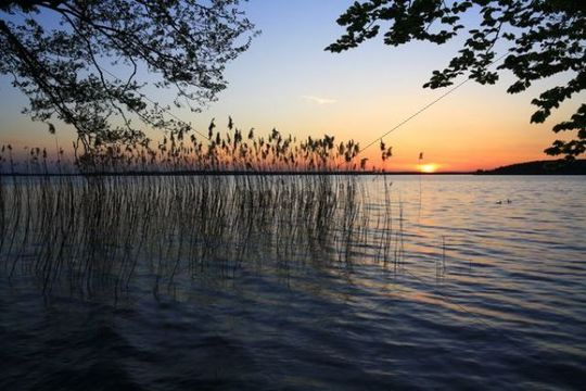 Evening atmosphere, sunset on the Plauer See Lake, Mecklenburg Lake District, Mecklenburg-Western Pomerania, Germany, Europe