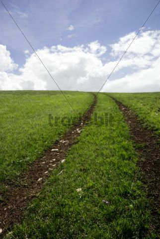 Pathway to heaven, wheel tracks in a field, Campo Imperatore, Abruzzo, Italy, Europe