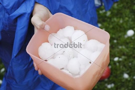 Hailstones in a plastic box collected by a child, 11.8.2008, Nicklheim, Bavaria, Germany, Europe