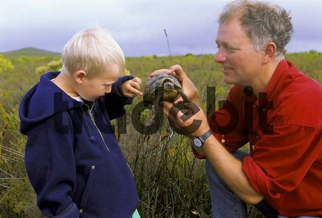 father shows to his child, four-year-olda turtle for touching, South Africa