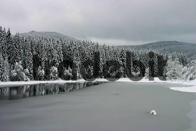 winter in Schluchsee