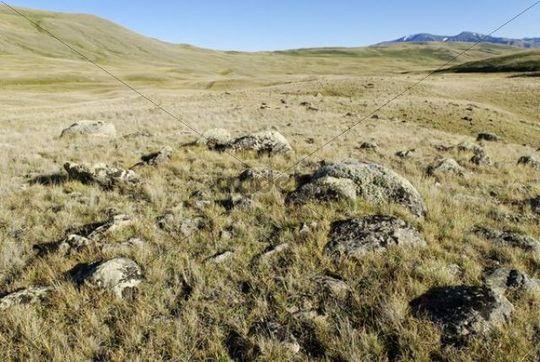 Chuya Steppe, Saylyugem Mountains, Altai Republic, Siberia, Russia, Asia