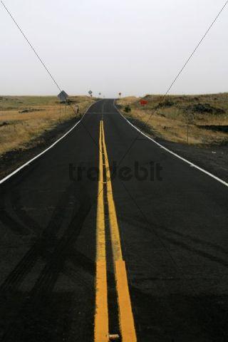 Road on the route to Mauna Kea, Big Island, Hawaii, Hawaii, USA