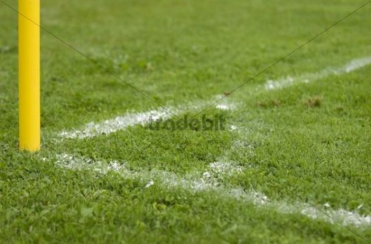 football pitch markings. on a football pitch in the
