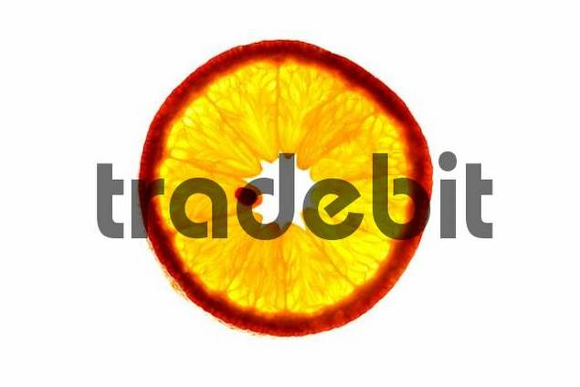 close-up, slice of an orange in back light