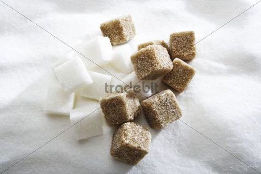 Cube sugar, brown and white, on a bed of sugar
