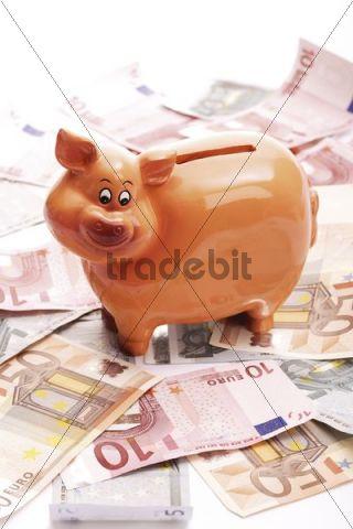 Piggy bank on Euro bank notes