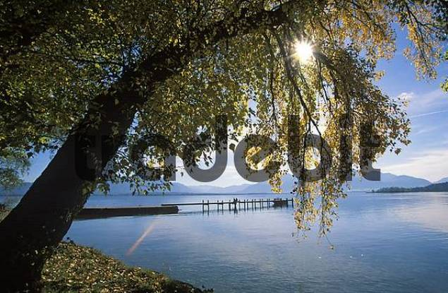 Fraueninsel in Chiemsee lake Upper Bavaria Germany