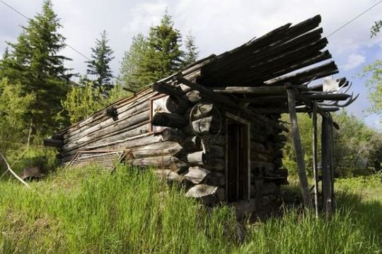 Old log building, trappers cabin, Hootalinqua, Yukon Territory, Canada, North America
